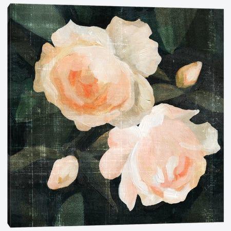 Soft Garden Roses I Canvas Print #EMC11} by Emma Caroline Canvas Artwork