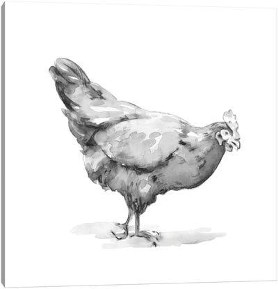 Barn Fowl II Canvas Art Print