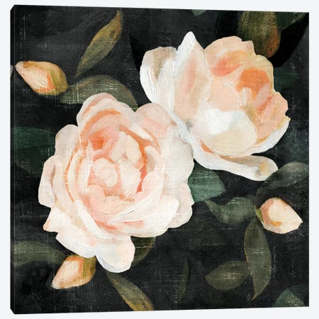 Soft Garden Roses II Canvas Print #EMC12} by Emma Caroline Canvas Artwork