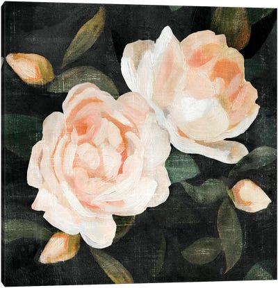 Soft Garden Roses II Canvas Art Print