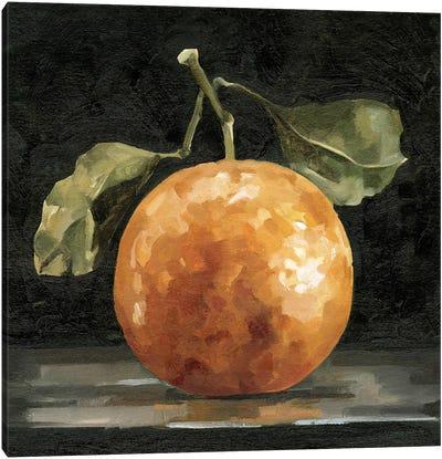 Dark Orange Deux I Canvas Art Print