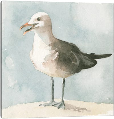 Simple Seagull II Canvas Art Print