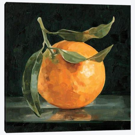 Dark Orange Still Life I Canvas Print #EMC21} by Emma Caroline Art Print