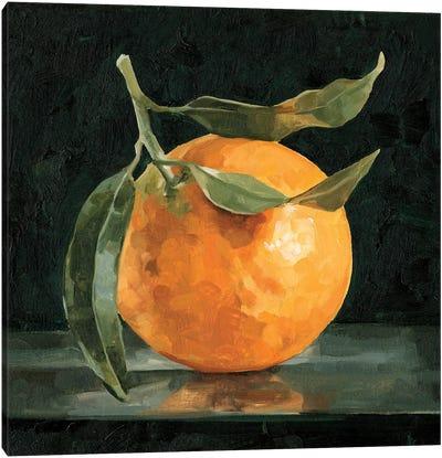 Dark Orange Still Life I Canvas Art Print