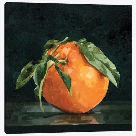 Dark Orange Still Life II Canvas Print #EMC22} by Emma Caroline Art Print