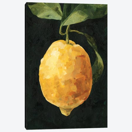 Dark Lemon I Canvas Print #EMC53} by Emma Caroline Canvas Wall Art