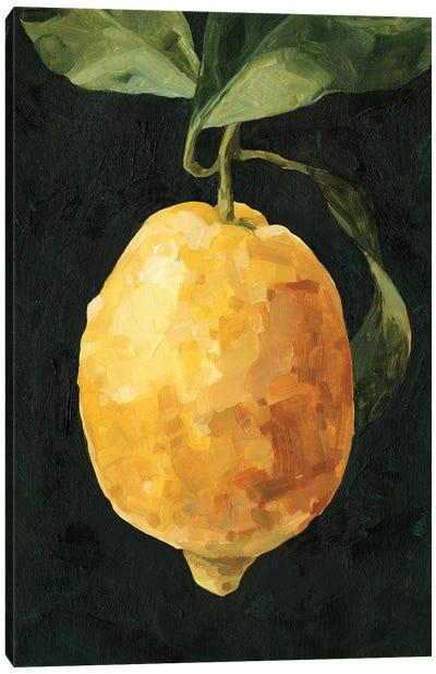 Dark Lemon I Canvas Art Print