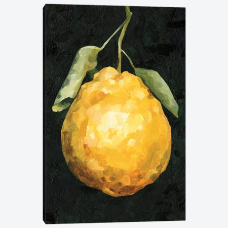 Dark Lemon II Canvas Print #EMC54} by Emma Caroline Art Print