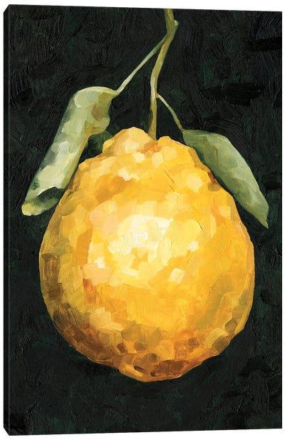 Dark Lemon II Canvas Art Print