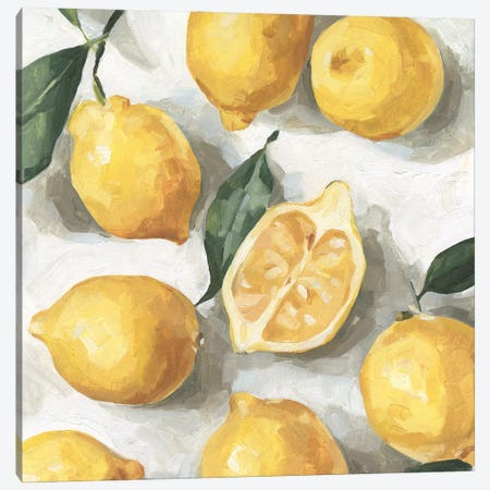 Fresh Lemons I Canvas Print #EMC57} by Emma Caroline Canvas Art Print