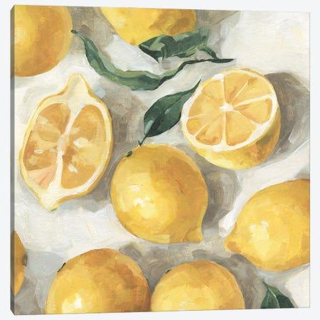 Fresh Lemons II Canvas Print #EMC58} by Emma Caroline Canvas Artwork