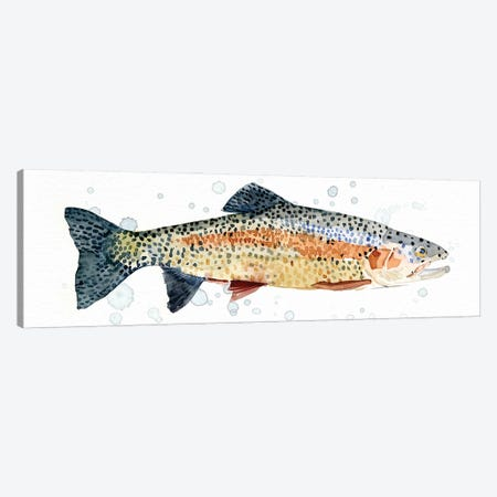 Watercolor Rainbow Trout I Canvas Print #EMC63} by Emma Caroline Art Print