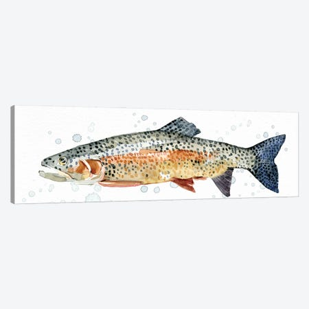 Watercolor Rainbow Trout II Canvas Print #EMC64} by Emma Caroline Canvas Artwork