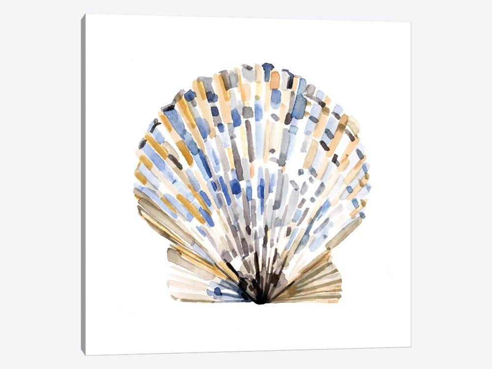 Simple Shells I by Emma Caroline 1-piece Canvas Wall Art