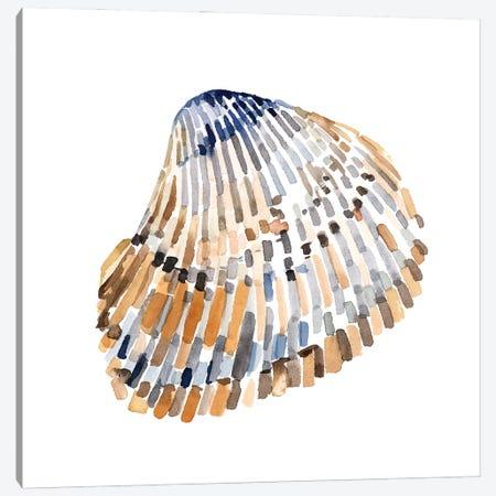 Simple Shells II Canvas Print #EMC68} by Emma Caroline Art Print