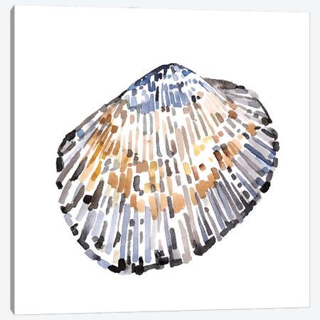 Simple Shells IV Canvas Print #EMC70} by Emma Caroline Canvas Wall Art