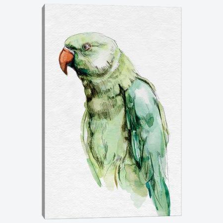 Bright Parrot Portrait I Canvas Print #EMC81} by Emma Caroline Art Print