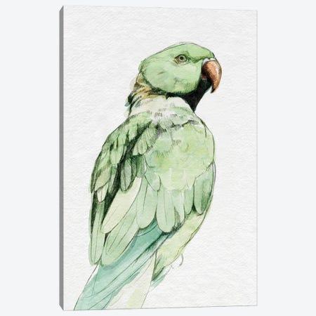 Bright Parrot Portrait II Canvas Print #EMC82} by Emma Caroline Art Print