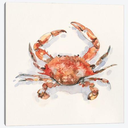 Crusty Crab I Canvas Print #EMC84} by Emma Caroline Canvas Art