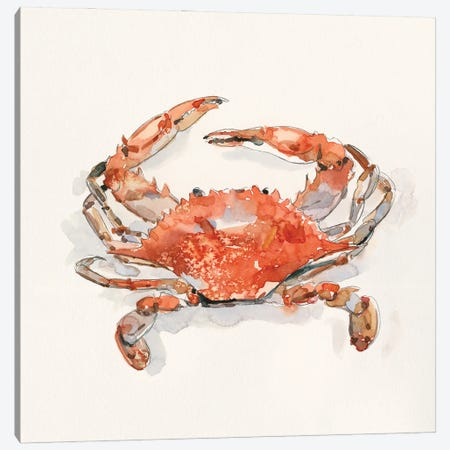 Crusty Crab II Canvas Print #EMC85} by Emma Caroline Canvas Artwork