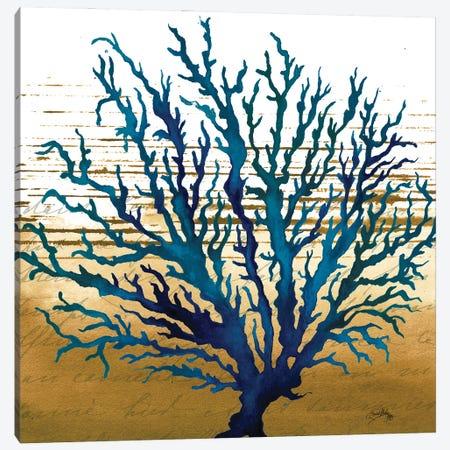 Coastal Blue II Canvas Print #EMD26} by Elizabeth Medley Art Print