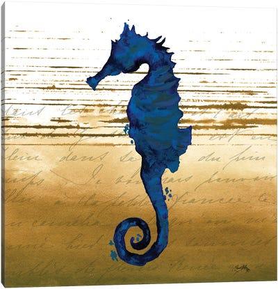 Coastal Blue III Canvas Art Print