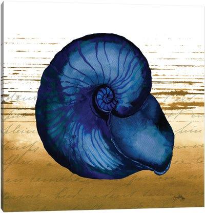 Coastal Blue IV Canvas Art Print