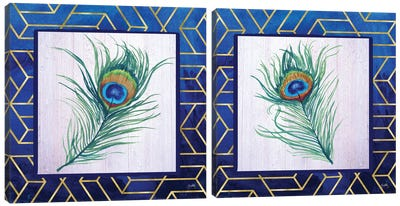 Peacock Feather Diptych Canvas Art Print