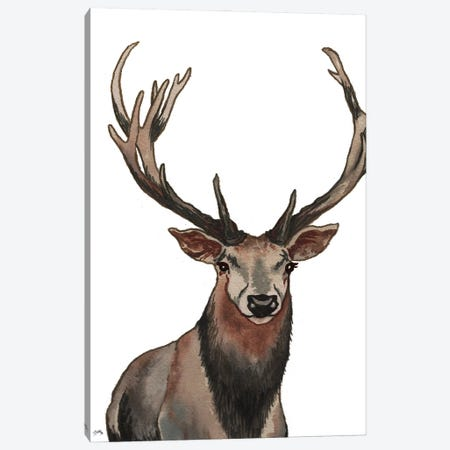 Elk Canvas Print #EMD30} by Elizabeth Medley Canvas Print
