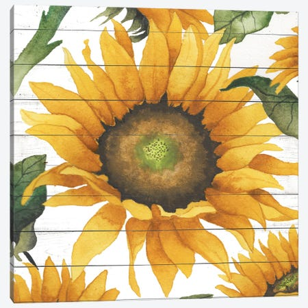 Happy Sunflower I 3-Piece Canvas #EMD34} by Elizabeth Medley Canvas Wall Art