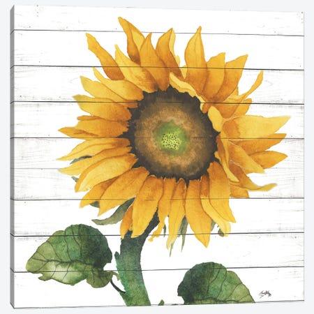 Happy Sunflower II Canvas Print #EMD35} by Elizabeth Medley Canvas Wall Art