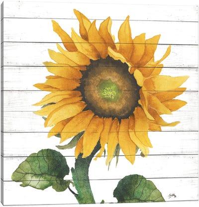 Happy Sunflower II Canvas Art Print