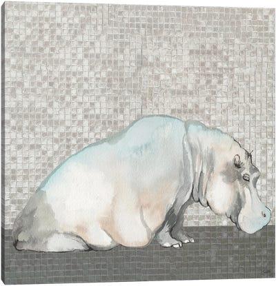 Introspective Hippo Canvas Art Print