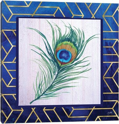 Peacock Feather I Canvas Art Print