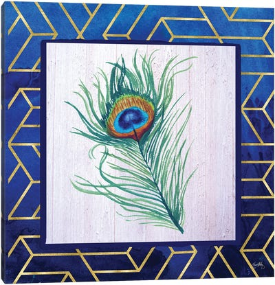 Peacock Feather II Canvas Art Print
