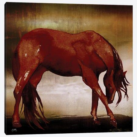 Red Horse I Canvas Print #EMD52} by Elizabeth Medley Art Print