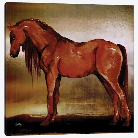 Red Horse II Canvas Print #EMD53} by Elizabeth Medley Art Print