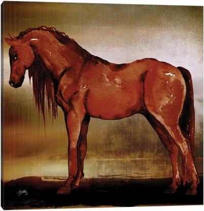 Red Horse II Canvas Art Print