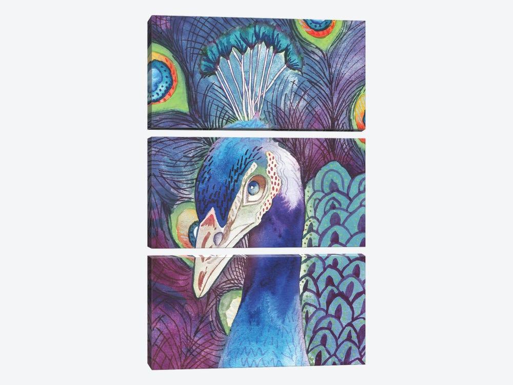 Hidden Peacock by Elizabeth Medley 3-piece Canvas Print