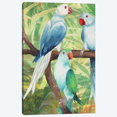 Tropical Birds I Canvas Print #EME171} by Elizabeth Medley Canvas Art Print