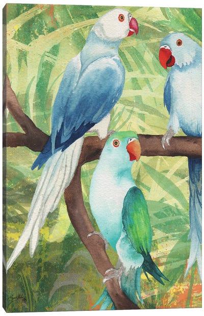 Tropical Birds I Canvas Art Print