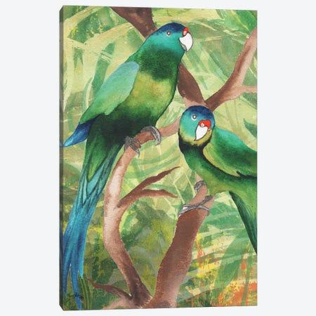 Tropical Birds II Canvas Print #EME172} by Elizabeth Medley Canvas Print