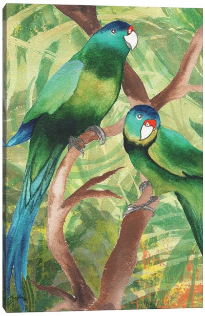 Tropical Birds II Canvas Art Print