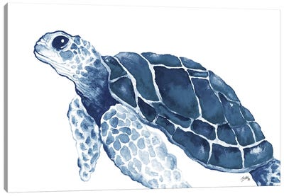 Turtle in the Blues Canvas Art Print