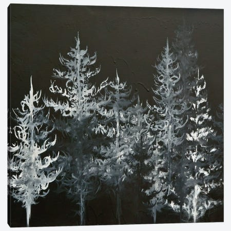 Black Trees Canvas Print #EME28} by Emily Magone Canvas Art Print