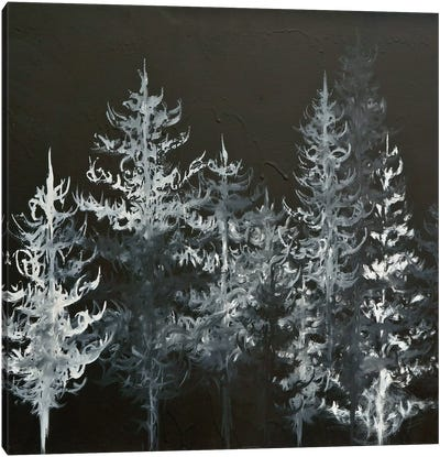 Black Trees Canvas Print #EME28