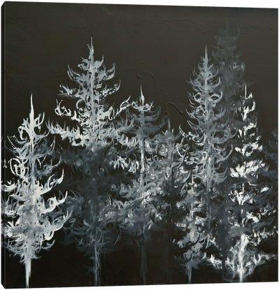 Black Trees Canvas Art Print