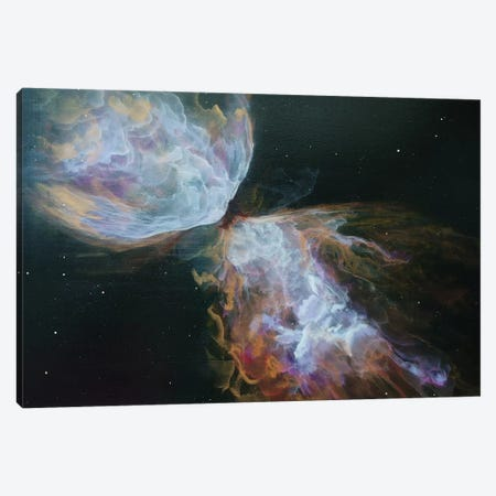 Butterfly Nebula Canvas Print #EME30} by Emily Magone Canvas Artwork