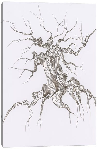 Gnarly Tree Canvas Art Print