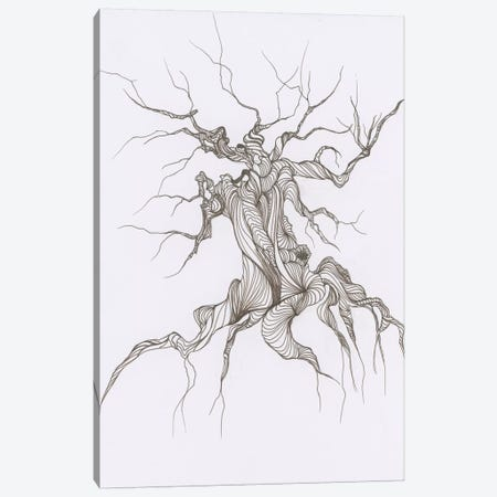 Gnarly Tree Canvas Print #EME37} by Emily Magone Art Print